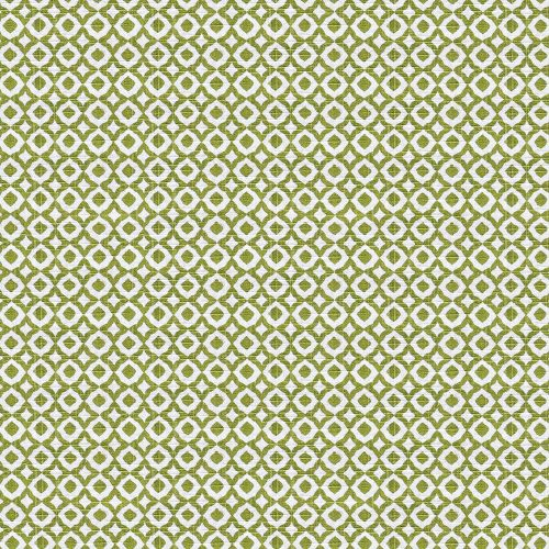 Jaipur Lime Fabric